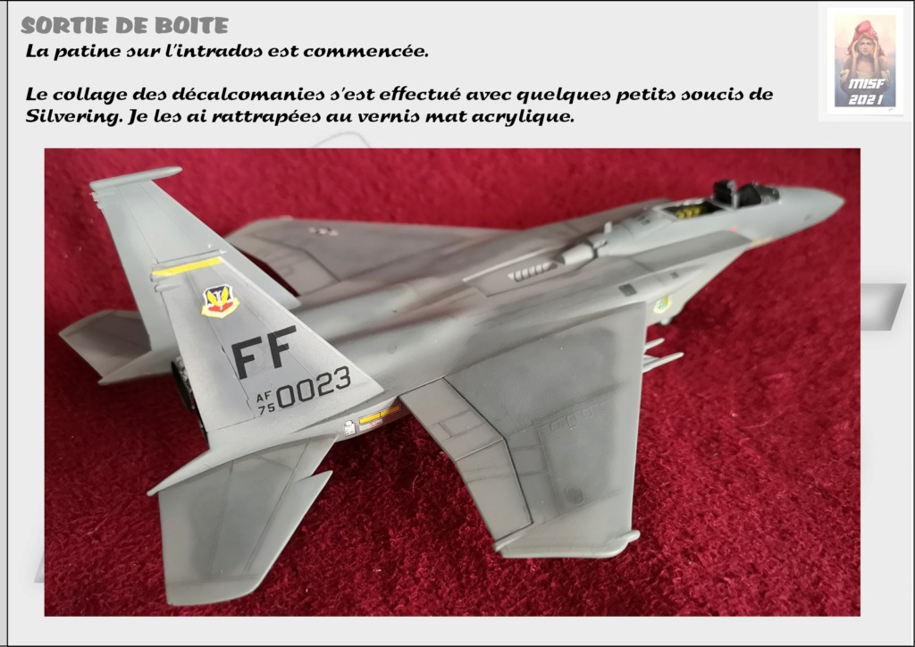 From the box - MC DONNELL DOUGLAS F15 EAGLE - AIRFIX 1-72 *** Terminé en pg 5 - Page 4 F15_0054