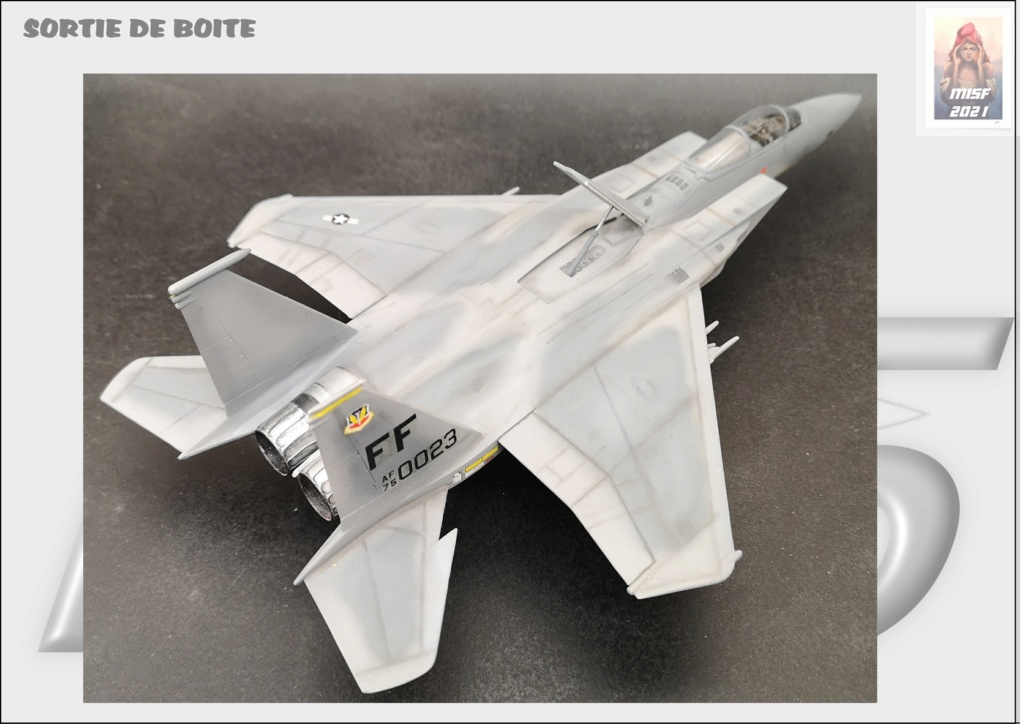 From the box - MC DONNELL DOUGLAS F15 EAGLE - AIRFIX 1-72 *** Terminé en pg 5 - Page 5 F15_0056