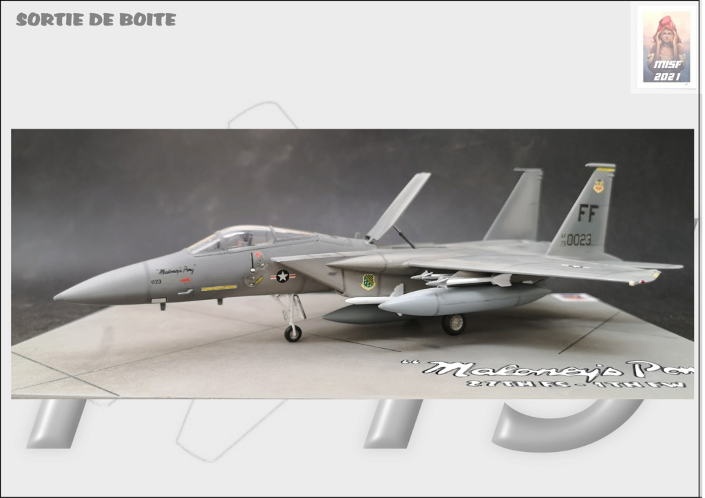 From the box - MC DONNELL DOUGLAS F15 EAGLE - AIRFIX 1-72 *** Terminé en pg 5 - Page 5 F15_0059