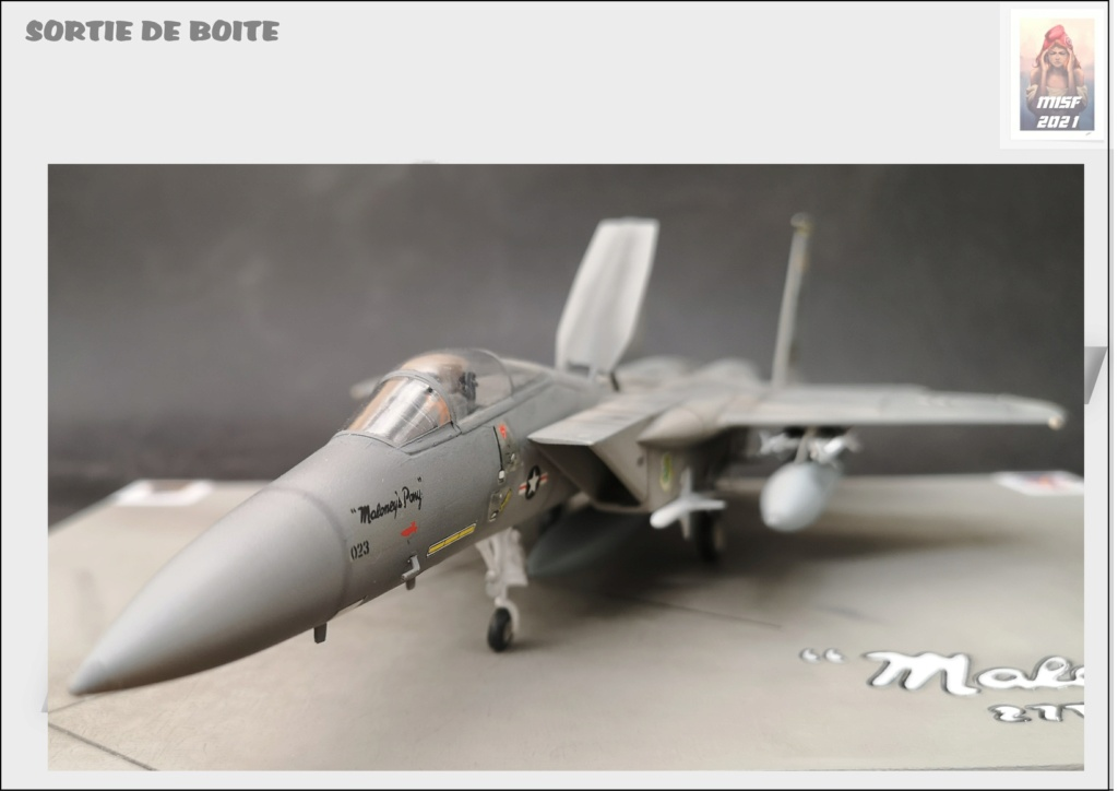 From the box - MC DONNELL DOUGLAS F15 EAGLE - AIRFIX 1-72 *** Terminé en pg 5 - Page 5 F15_0060