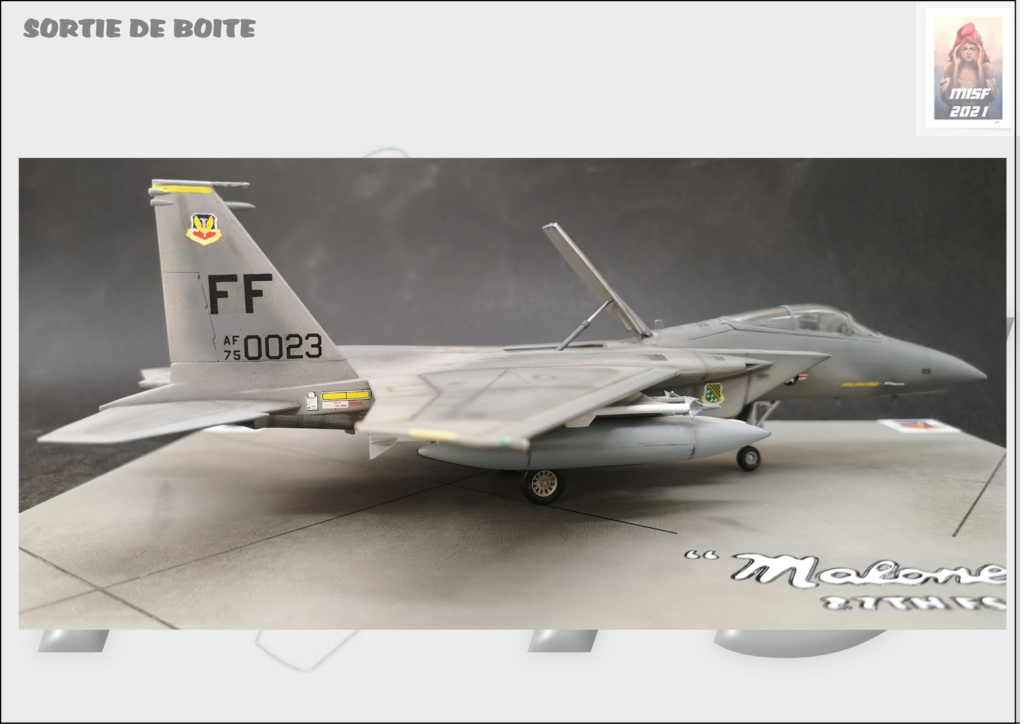 From the box - MC DONNELL DOUGLAS F15 EAGLE - AIRFIX 1-72 *** Terminé en pg 5 - Page 5 F15_0061