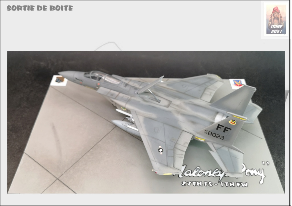 From the box - MC DONNELL DOUGLAS F15 EAGLE - AIRFIX 1-72 *** Terminé en pg 5 - Page 5 F15_0062