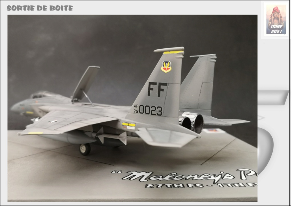 From the box - MC DONNELL DOUGLAS F15 EAGLE - AIRFIX 1-72 *** Terminé en pg 5 - Page 5 F15_0065