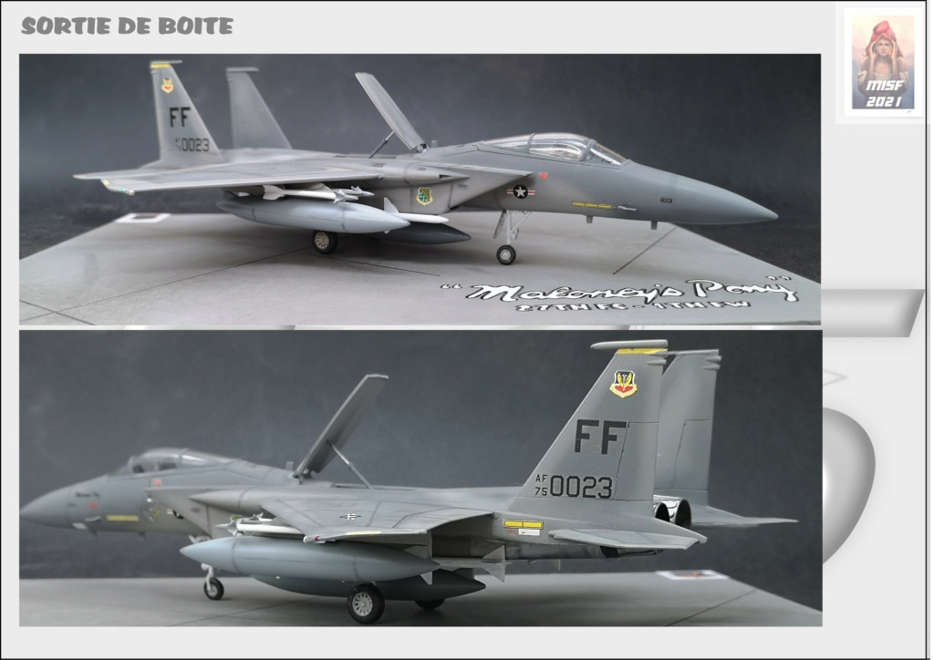 From the box - MC DONNELL DOUGLAS F15 EAGLE - AIRFIX 1-72 *** Terminé en pg 5 - Page 5 F15_0067
