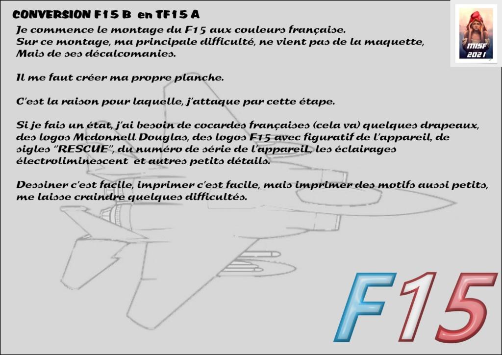 MCDONNELL DOUGLAS TF15-A (CONVERSION F15 B HELLER) 1/72 F15_fr13