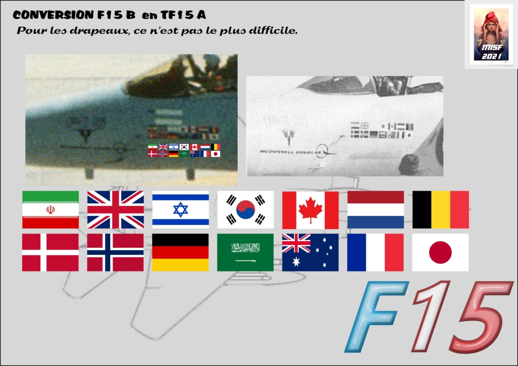 MCDONNELL DOUGLAS TF15-A (CONVERSION F15 B HELLER) 1/72 F15_fr14