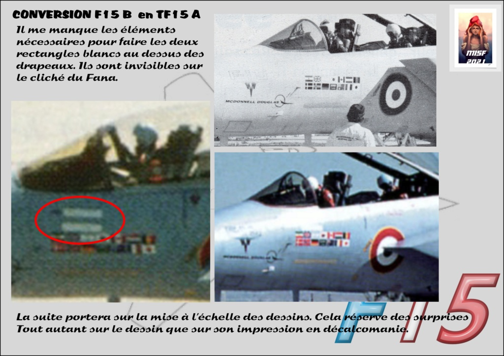 MCDONNELL DOUGLAS TF15-A (CONVERSION F15 B HELLER) 1/72 F15_fr16