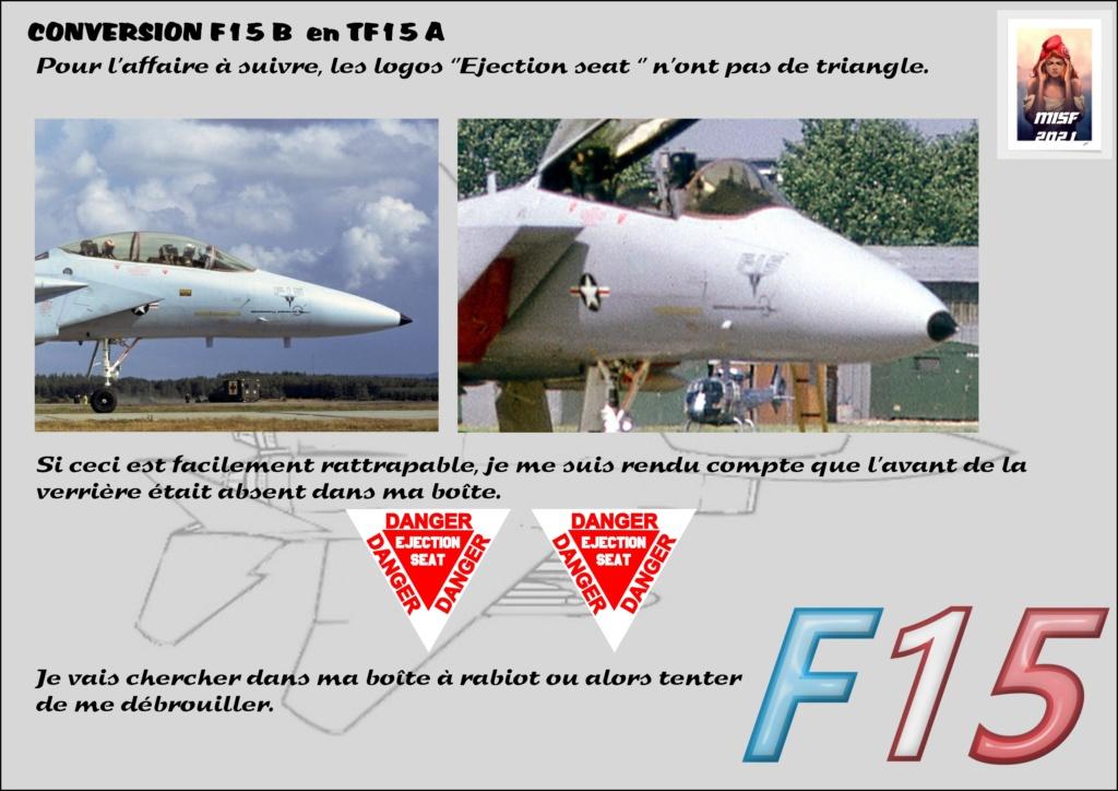 MCDONNELL DOUGLAS TF15-A (CONVERSION F15 B HELLER) 1/72 - Page 2 F15_fr20