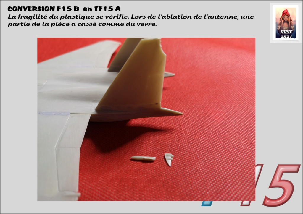 MCDONNELL DOUGLAS TF15-A (CONVERSION F15 B HELLER) 1/72 - Page 2 F15_fr25