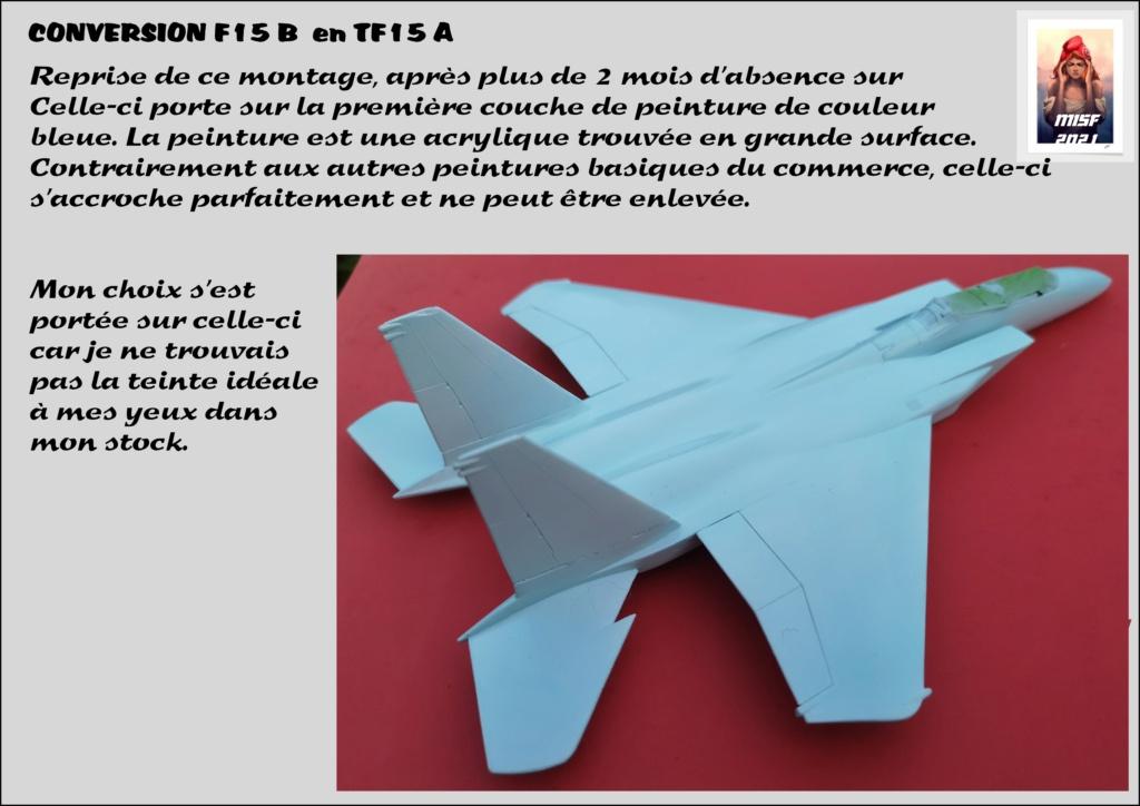 MCDONNELL DOUGLAS TF15-A (CONVERSION F15 B HELLER) 1/72 - Page 2 F15_fr29