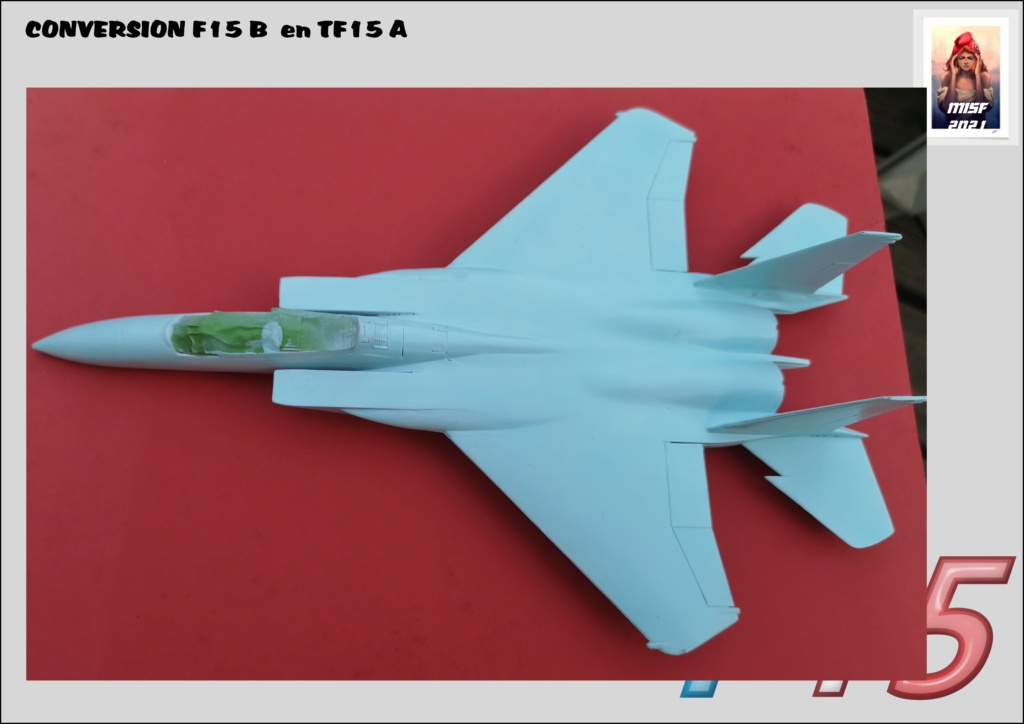 MCDONNELL DOUGLAS TF15-A (CONVERSION F15 B HELLER) 1/72 - Page 2 F15_fr30