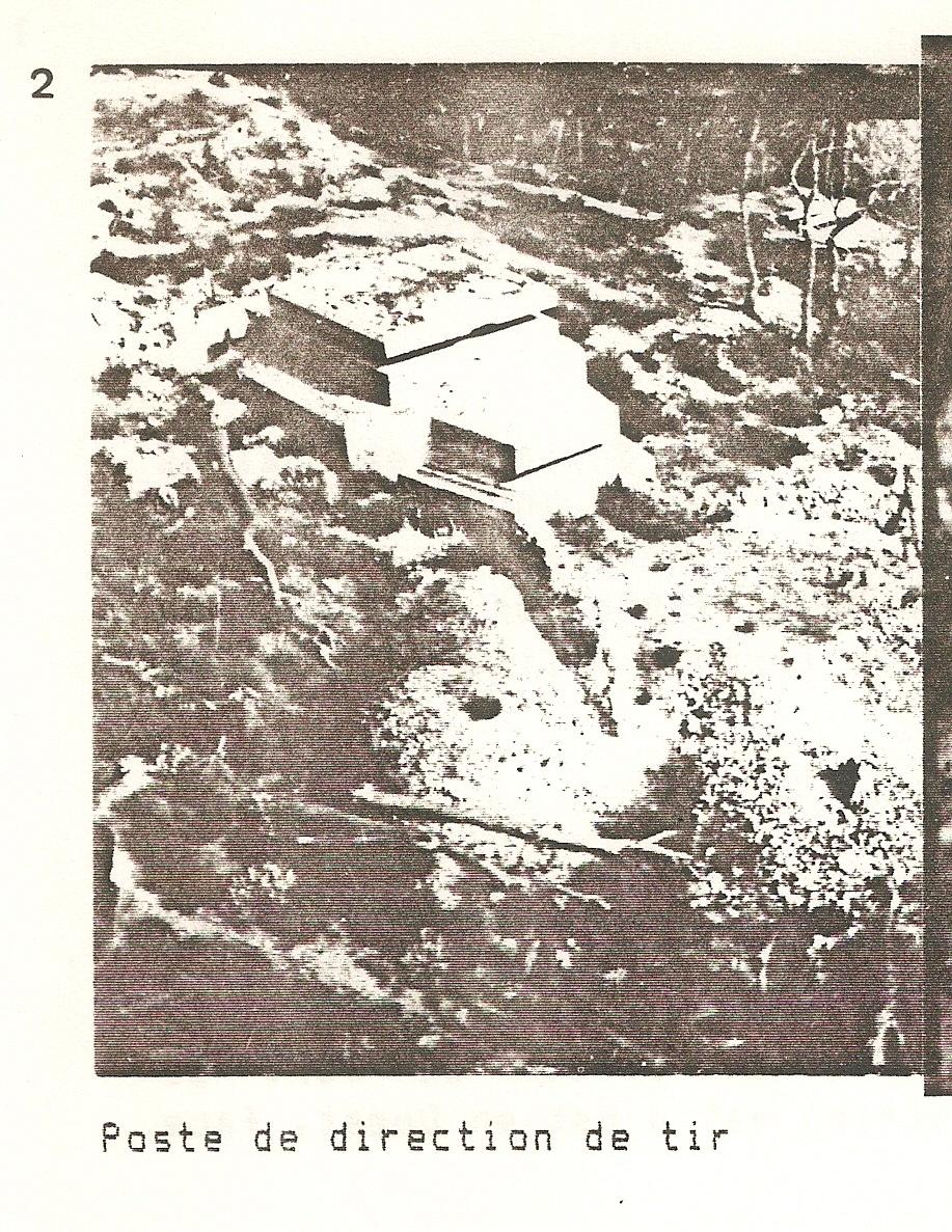 1er diorama avec blindés allemands au 1/72 - Page 5 Numzor10
