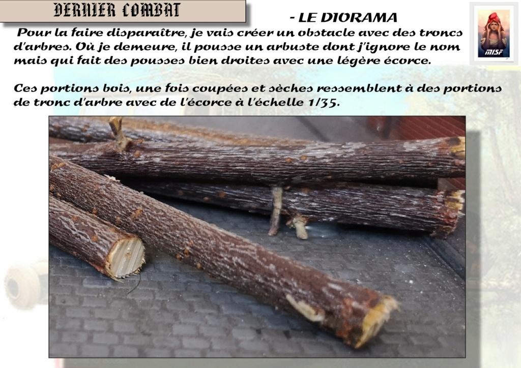 """DERNIER COMBAT"" RSO et PAK 40 - REVELL - 1/35 Rso_0422"