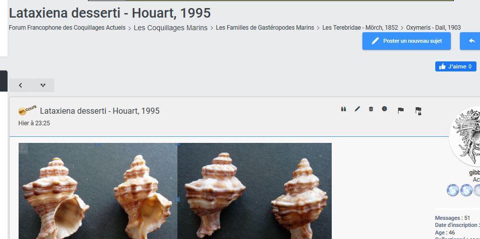 Lataxiena desserti - Houart, 1995 Captur10