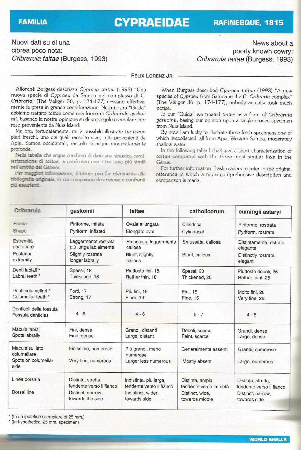 Cribrarula - aide pour gaskoinii / taitae / catholicorum / astaryi Taitae11