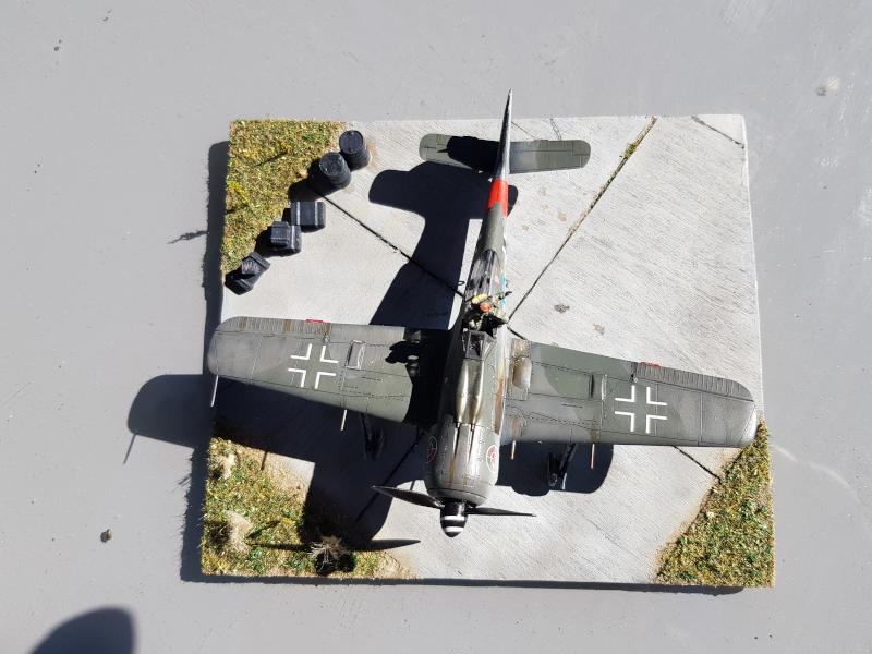 Retour de Mission (FW-190A8 1/72) Dessus11