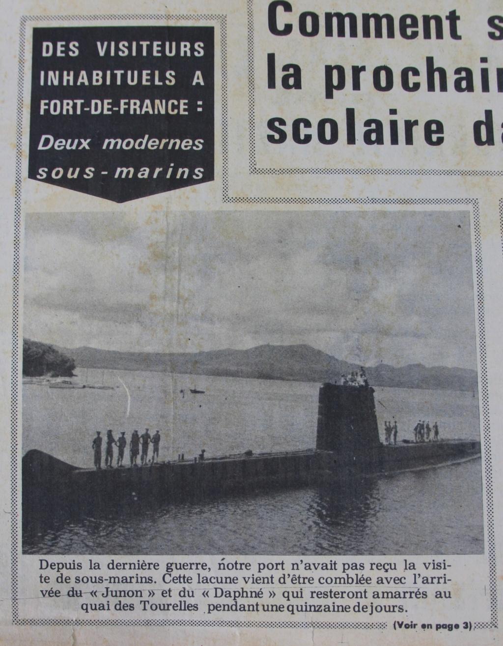 DAPHNÉ (SM) - Page 7 France11