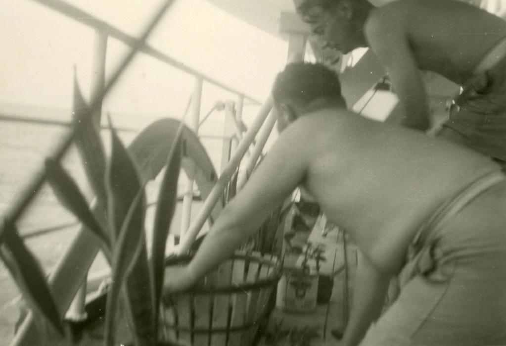 Photos du Kamina 8/8 au 22/09/57 Transport de troupes  - Page 3 Img06910