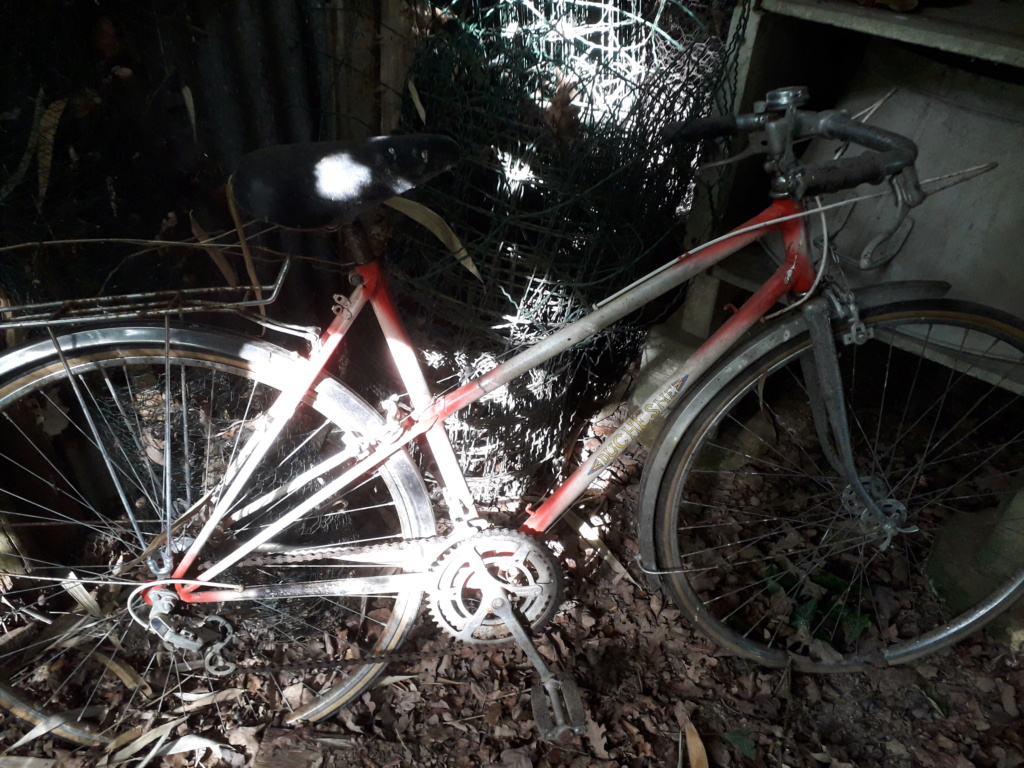 Vélo à identifier 20201010