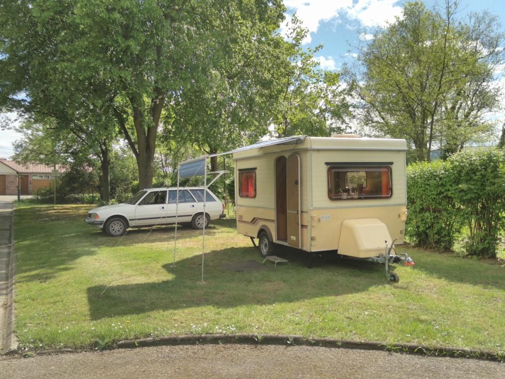 Rassemblement 2021 - Auxerre - Camping de l'arbre sec - Page 10 Img_2045