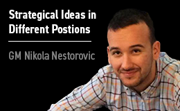 Nikola Nestorovic_Strategical Ideas_Different Positions_Nurtr 99910