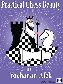 Yochanan Afek_Practical Chess Beauty_PDF+PGN Img_2010