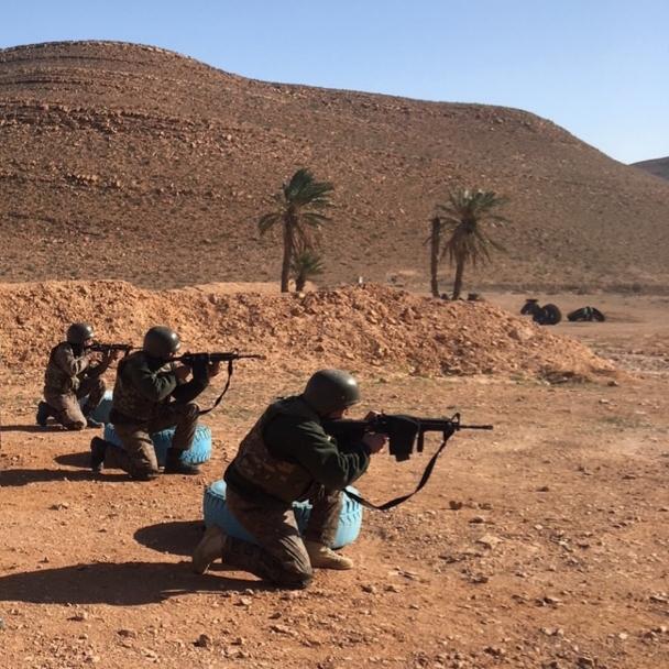 Armée Tunisienne / Tunisian Armed Forces / القوات المسلحة التونسية - Page 28 20201211