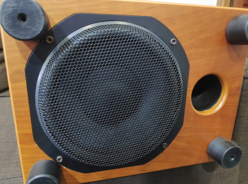 """Rel Storm III 10"""" Subwoofer (USED) Img_2100"""