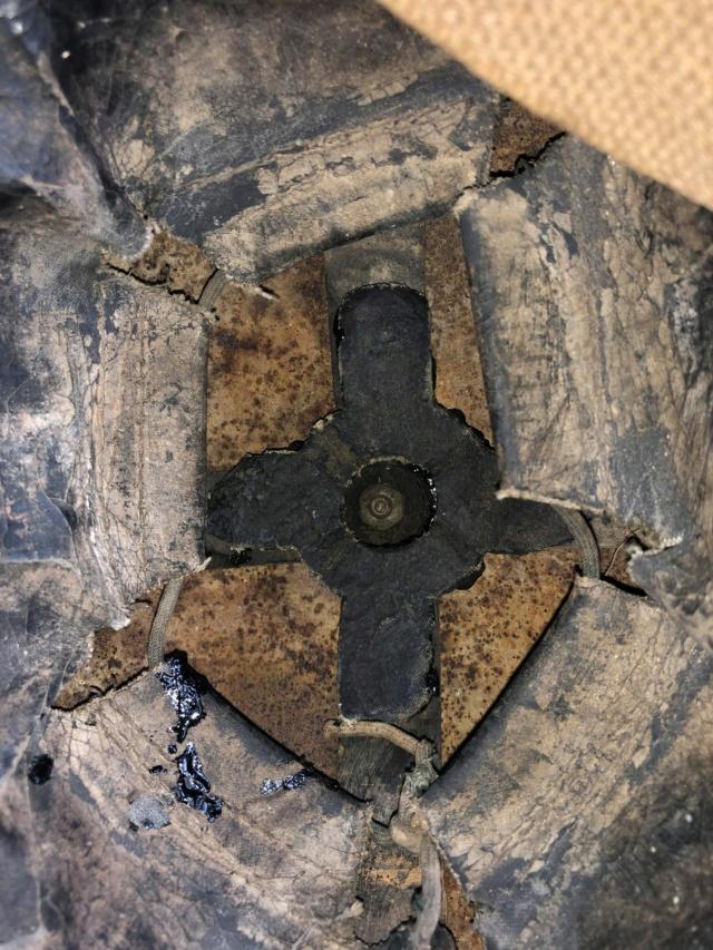 ESTIMATION et quelques questions concernant 2 casques découverts au grenier Casque14