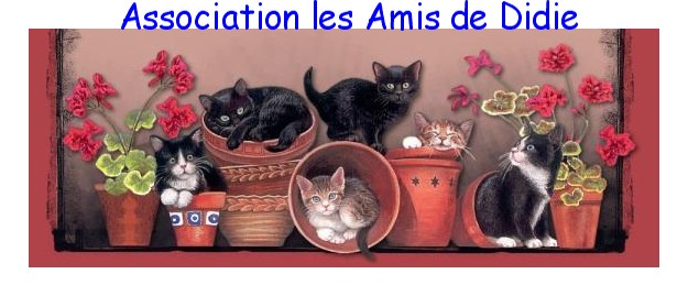 Association Les Amis de Didie