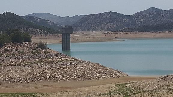 Monastir : 1 MD pour surmonter les problèmes d'irrigation C0dzav10