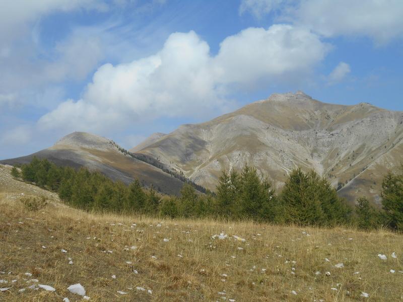 St Honorat version Trail Trail_17