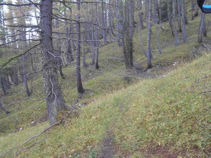 la Cime de Pal en Trail ça rime !! Trail_33