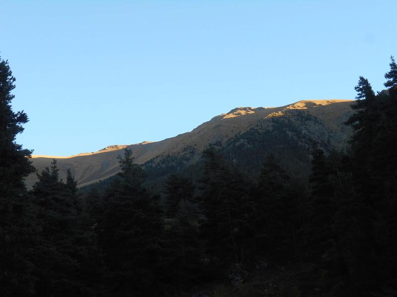 """Trail des """"neiges"""". Trail_43"""