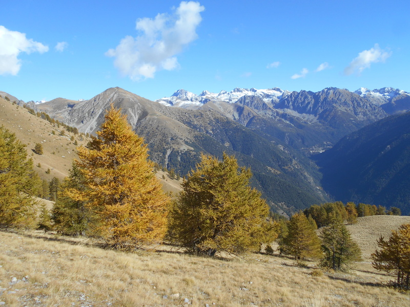 """Trail des """"neiges"""". Trail_57"""