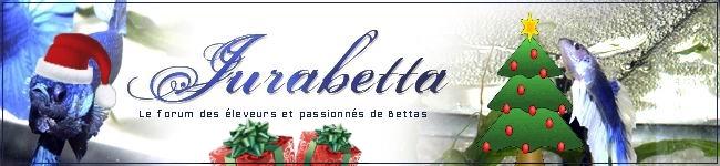 Betta-Forum Jurabetta