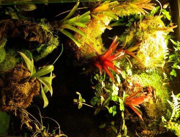 L'Eco-Palu de phill (photos)  - Page 5 Dscf1910