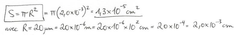 Calculs de surfaces, volumes et périmètres 5110