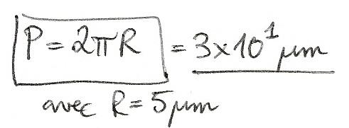 Calculs de surfaces, volumes et périmètres 6810