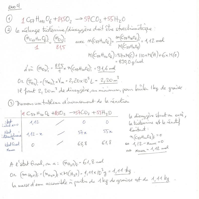 TD n°8 : Tableaux d'avancement Numyri96