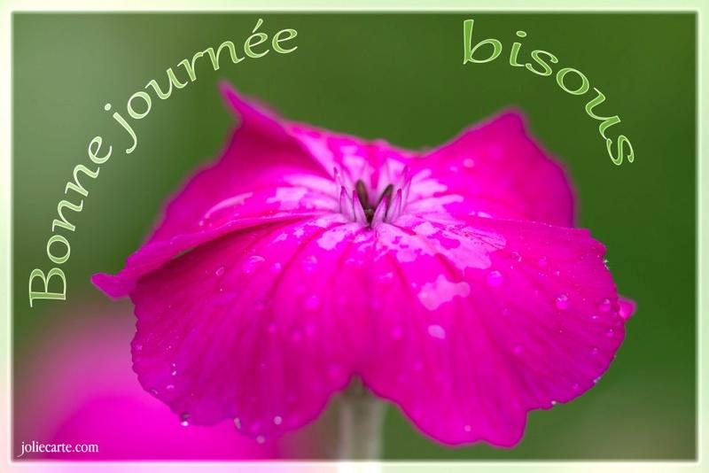 Bonjour - Page 2 Bisous10