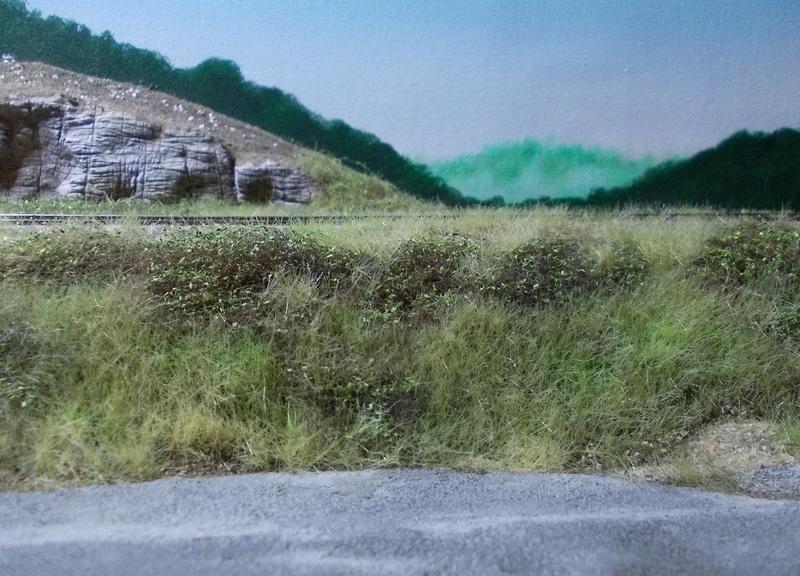 Le Transpyrénéen Oriental à l'échelle N - Page 17 Dscn0612