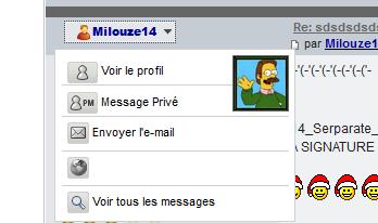 [PHPBB2] Afficher le profil des messages façon Invision et bien plus.. 123