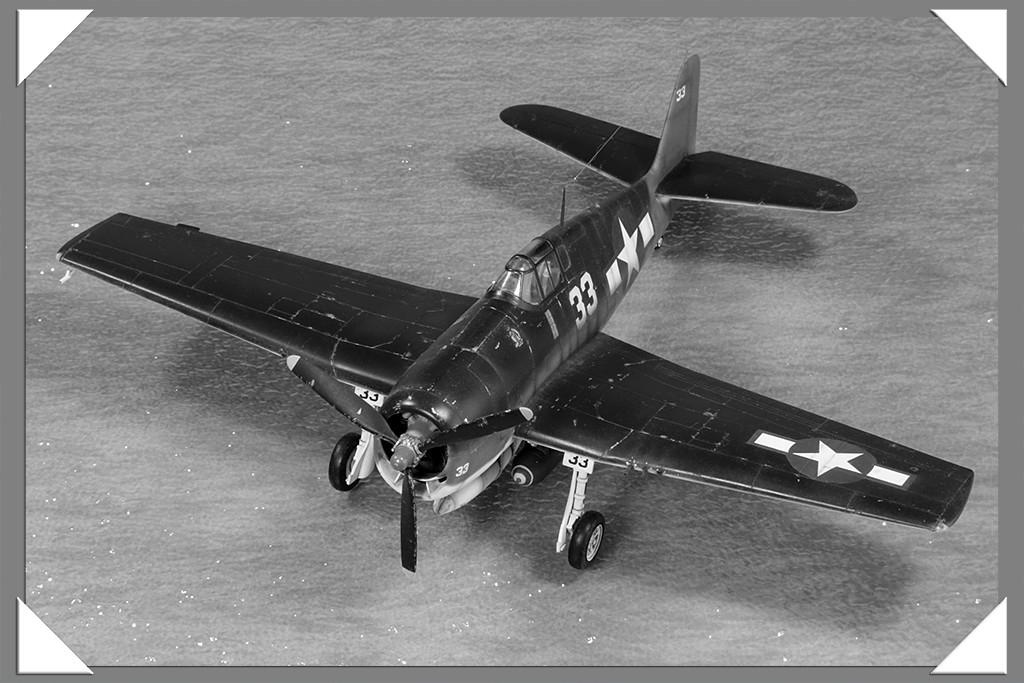 Grumman F6F-3 Hellcat - OTAKI 1/48ème Img_9617