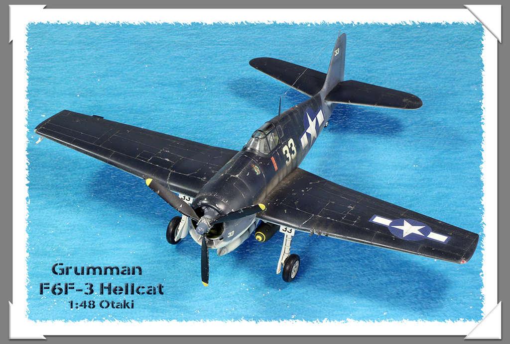 Grumman F6F-3 Hellcat - OTAKI 1/48ème Img_9618