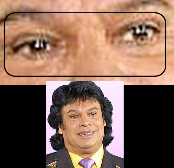 MURIÓ JUAN GABRIEL (¿?) - Página 2 Brown37
