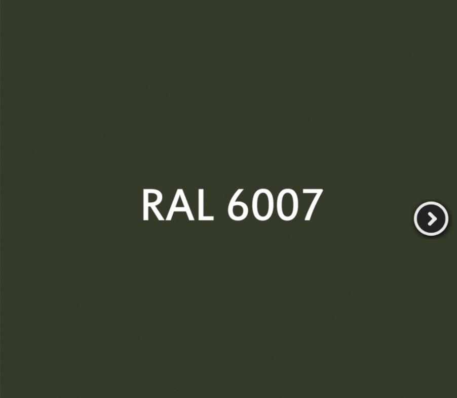 Recherche code RAL peinture Allemande materiel vert 39 à 43 Img_2123