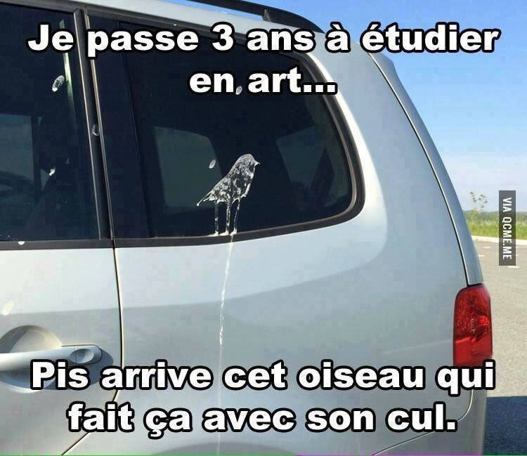 humour - Page 4 14063810
