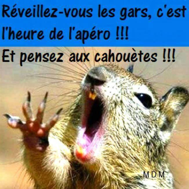 humour - Page 5 14212710