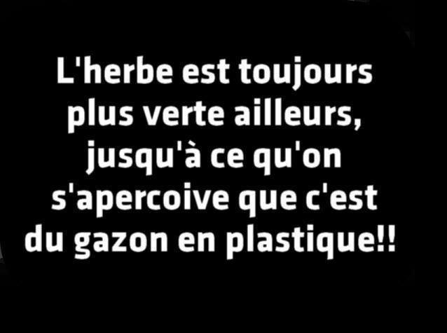 humour - Page 5 14232610